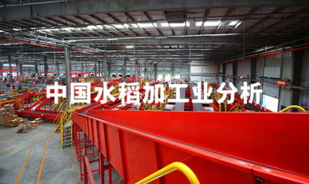 2019-2020年中国水稻生产规模、消费情况及加工业分析