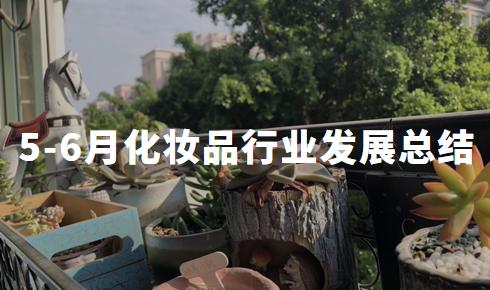 2020年5-6月中国化妆品行业发展现状与总结分析