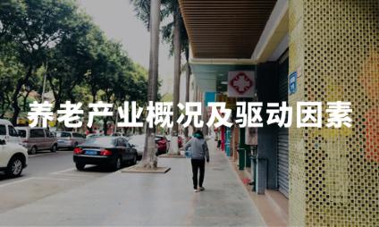 2020H1中国养老产业发展概况及驱动因素分析