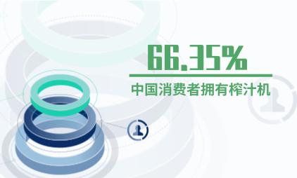 网红小家电行业数据分析:66.35%中国消费者拥有榨汁机