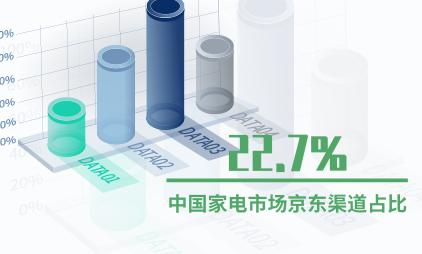网红小家电行业数据分析:中国家电市场京东渠道占比22.7%