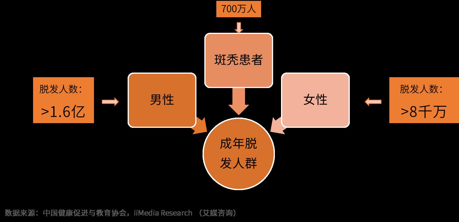 2019年中国毛发健康产业发展状况及前景分析