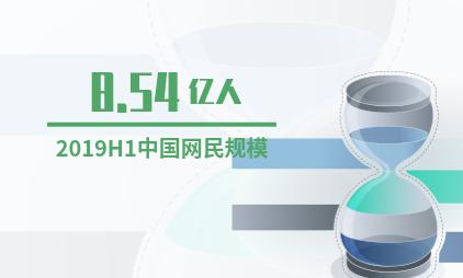 中国私域流量行业数据分析:2019H1互联网网民规模为8.54亿人