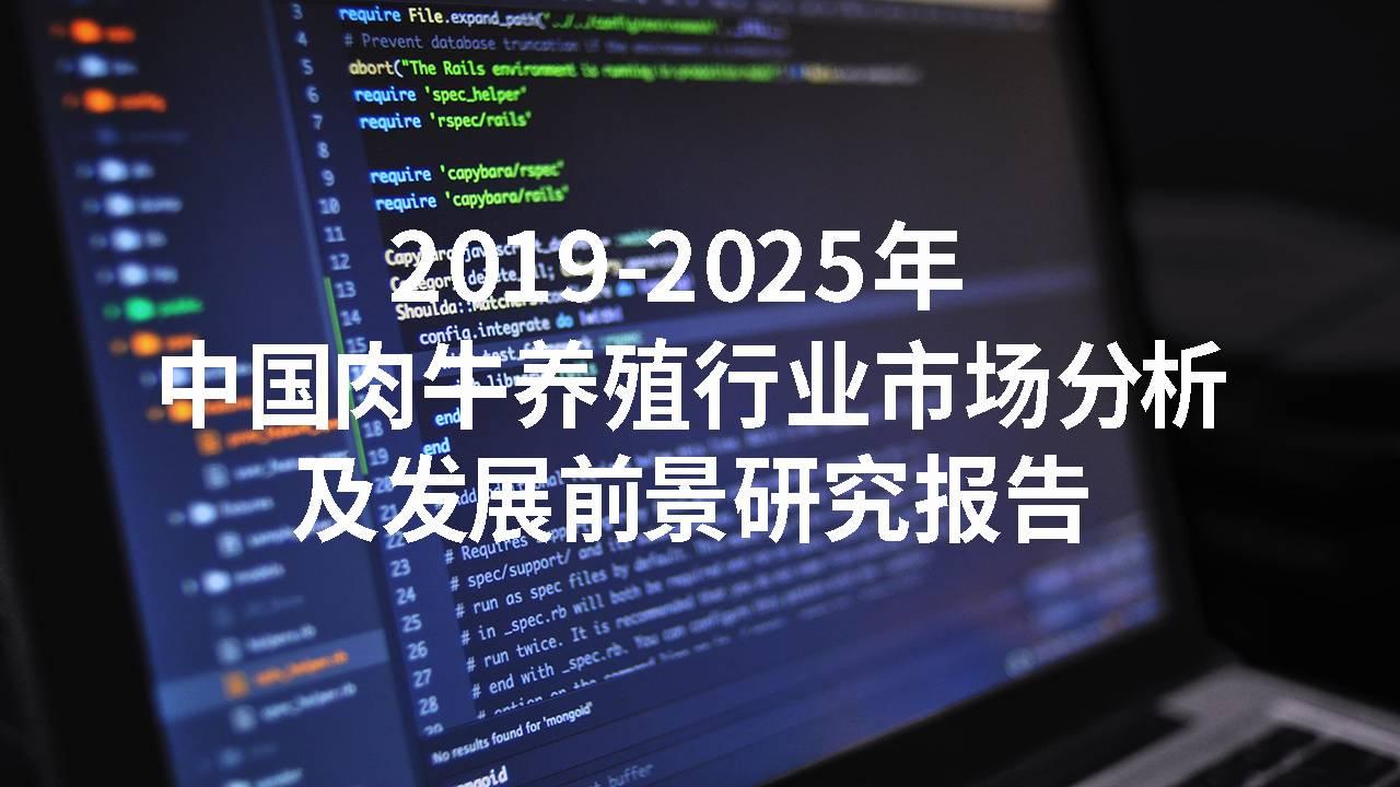 2019-2025年中国肉牛养殖行业市场分析及发展前景研究报告