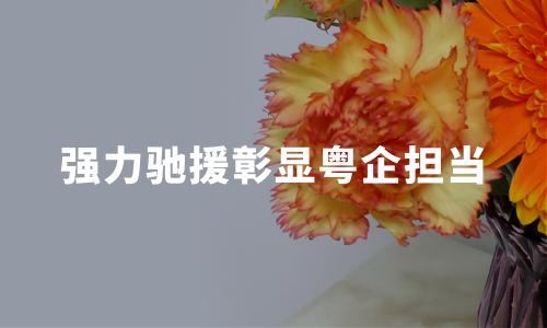 强力驰援彰显粤企担当:火神山医院背后的的广东身影