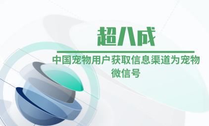 宠物行业数据分析:超八成中国宠物用户获取信息渠道为宠物微信号