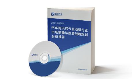 2019-2024年中国汽车用天然气发动机行业市场前瞻与投资战略规划分析报告