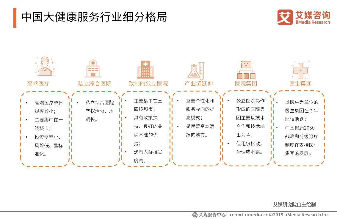 中国大健康服务行业细分格局