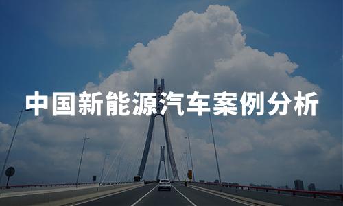 2020年中国新能源汽车案例分析:特斯拉