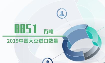 农业数据分析:2019中国大豆进口数量达8851万吨