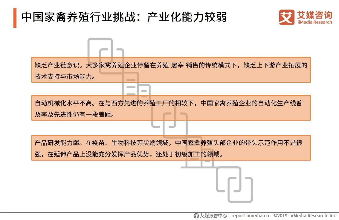 中国家禽养殖行业挑战分析:产业化能力较弱