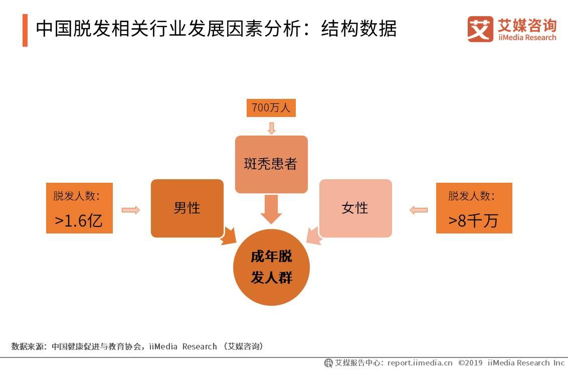 中国脱发保健行业数据分析:2019年中国脱发人群预计突破2.5亿人