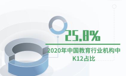 教育行业数据分析:2020年中国教育行业机构中K12占比25.8%