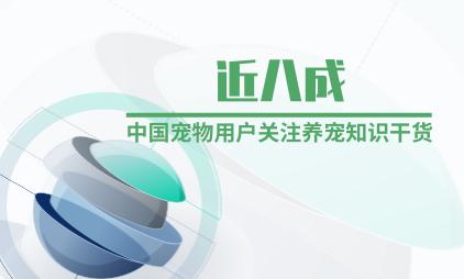 宠物行业数据分析:近八成中国宠物用户关注养宠知识干货