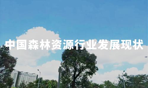 2019-2020中国森林资源行业发展现状、经营模式、发展困境分析