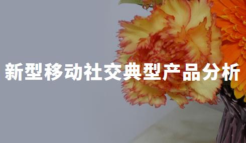 2020年中国新型移动社交典型产品分析——玩吧、soul、积目