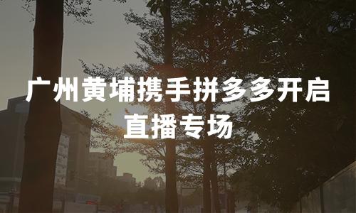 广州黄埔携手拼多多开启直播专场:多国商务领事组团直播,59万网友围观