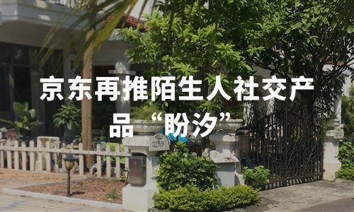 """京东再推陌生人社交产品""""盼汐"""",中国陌生人社交市场动态与趋势分析"""