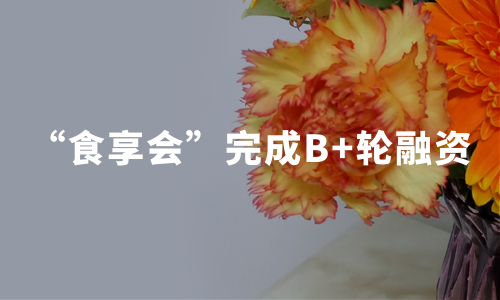 食享会完成腾讯双百及老股东B+轮融资,2019中国社区团购行业趋势解读