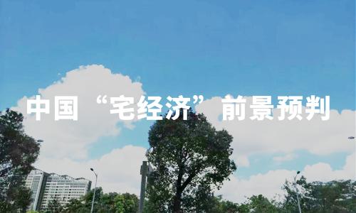 """2020年中国""""宅经济""""发展转折点及前景预判分析"""