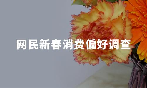 2020中国网民新春消费偏好调查分析