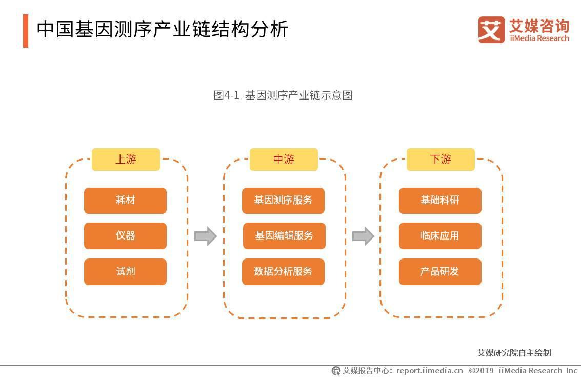 中国基因测序产业链结构分析