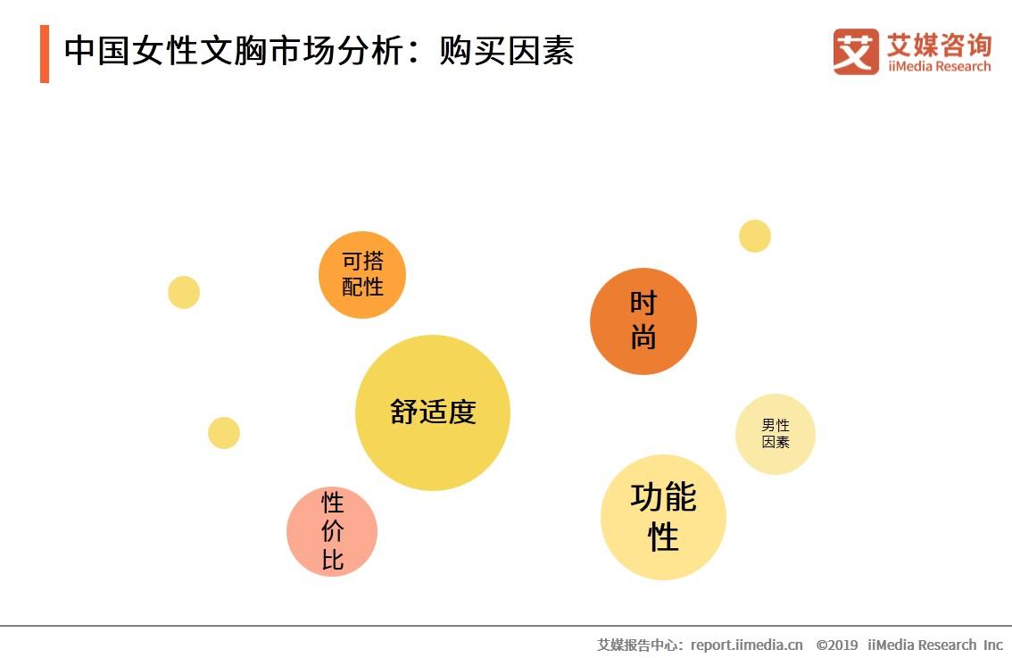 中国女性文胸市场分析:购买因素