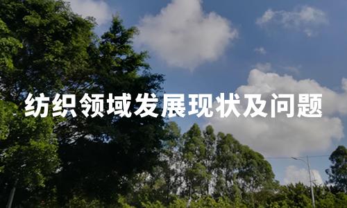 2020年中国纺织领域发展现状及问题分析