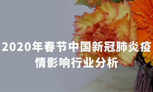 """""""宅经济""""需求大增,2020年春节中国新冠肺炎疫情影响行业分析"""