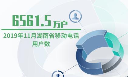 电话行业数据分析:2019年11月湖南省移动电话用户数为6561.5万户