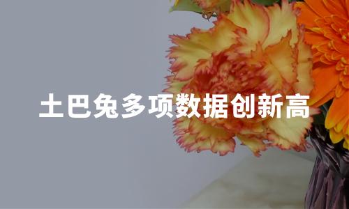 土巴兔多项数据创新高,2020中国互联网家装行业现状及发展趋势分析