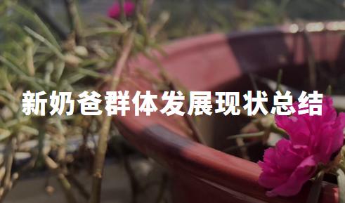 """2020年中国""""新奶爸""""群体消费顾虑分析及发展现状总结"""