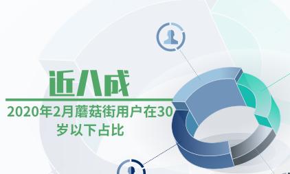 电商行业数据分析:2020年2月蘑菇街近八成用户在30岁以下