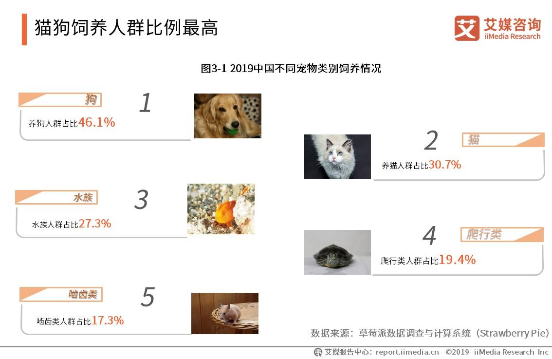猫狗饲养人群比例最高