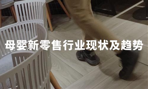 2020H1中国母婴新零售行业发展现状及趋势解读