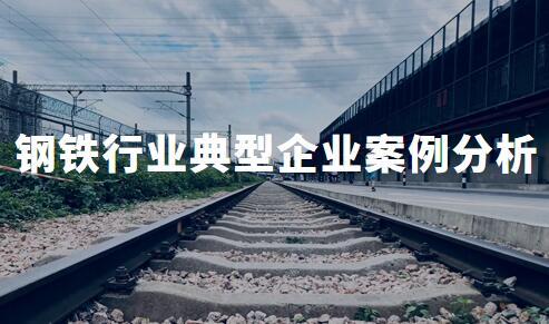 2020年中国钢铁行业典型企业案例分析——宝钢股份