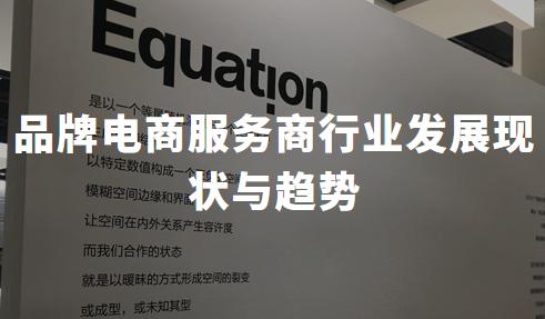 2020H1中国品牌电商服务商行业发展现状与趋势分析