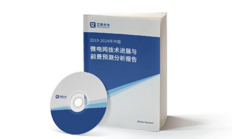2021-2022年中国微电网技术进展与前景预测分析报告