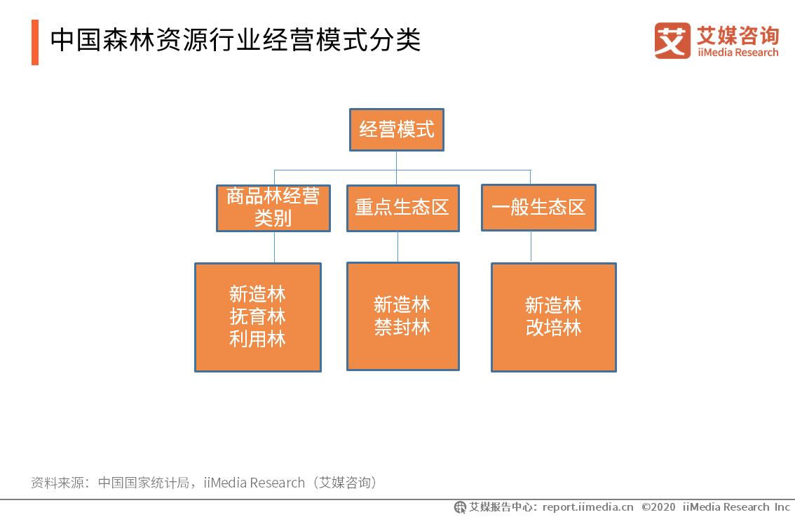 中国森林资源行业经营模式分类