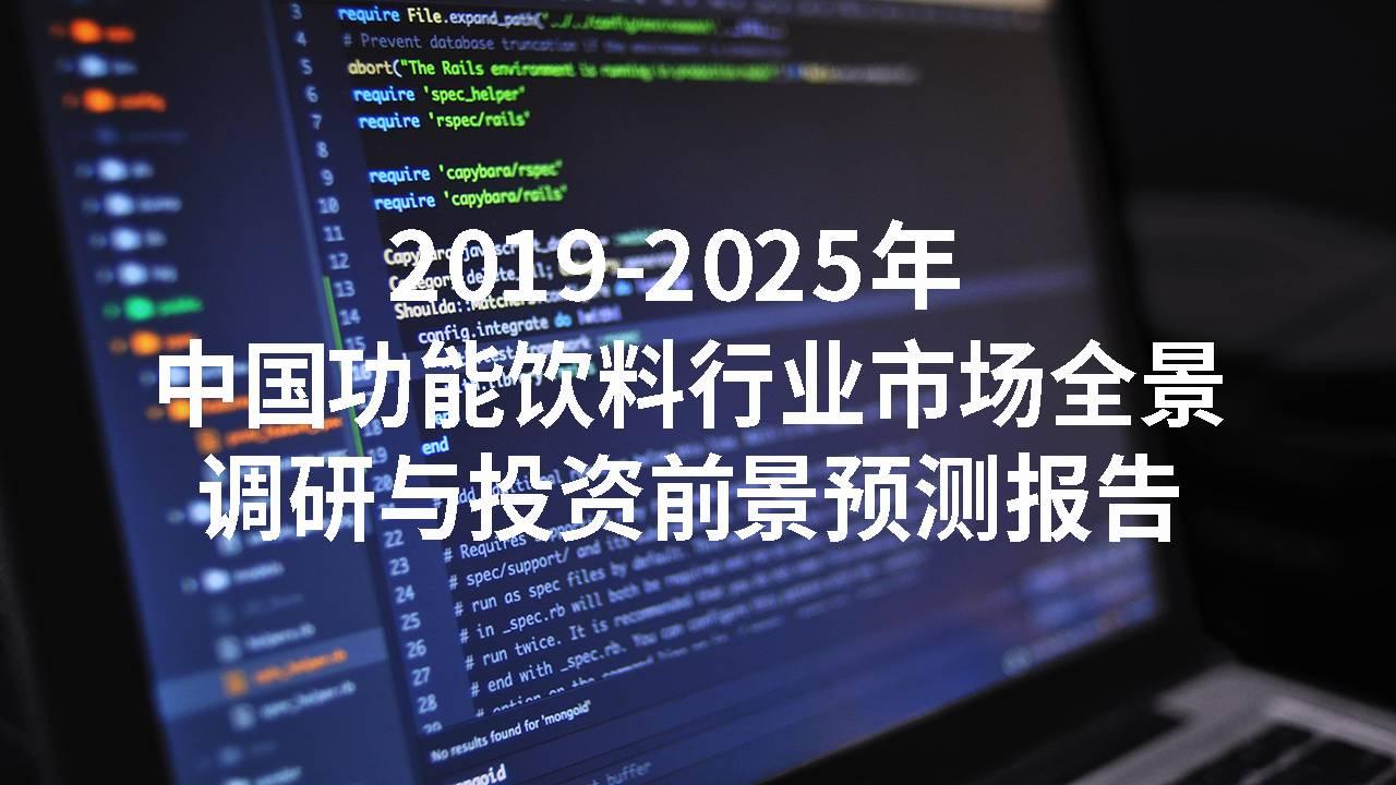 2019-2025年中国功能饮料行业市场全景调研与投资前景预测报告