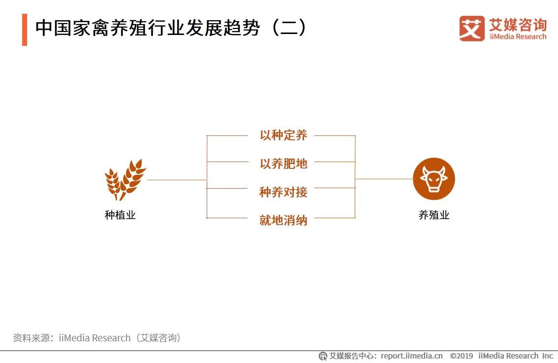 中国家禽养殖行业发展趋势-艾媒咨询