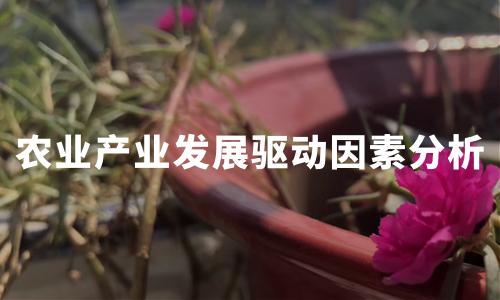 2020年中国农业产业数据及发展驱动因素分析