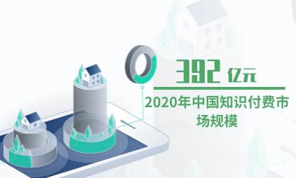 知识付费行业数据分析:2020年中国知识付费市场规模将达392亿元