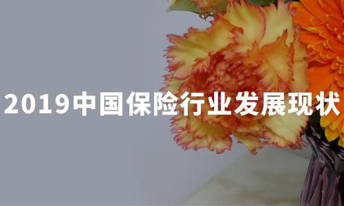 银保监会支持意外险疾病险承保新冠肺炎,2019中国保险行业发展现状分析