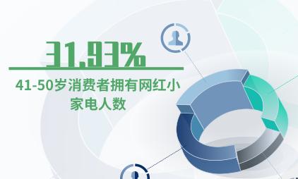 网红小家电行业数据分析:41-50岁消费者拥有网红小家电人数占比31.93%