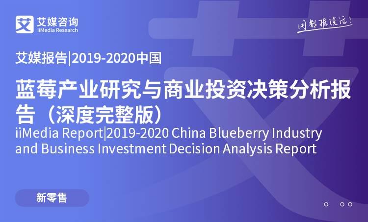 艾媒报告 |2019-2020中国蓝莓五分3d研究与商业投资决策分析报告(深度完整版)