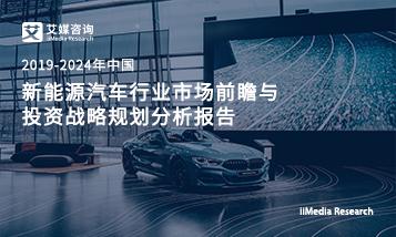 2019-2024年中国新能源汽车行业市场前瞻与投资战略规划分析报告