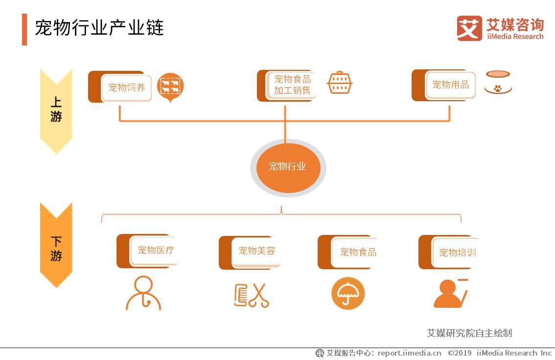 2019中国宠物经济发展现状、产业链及未来趋势分析