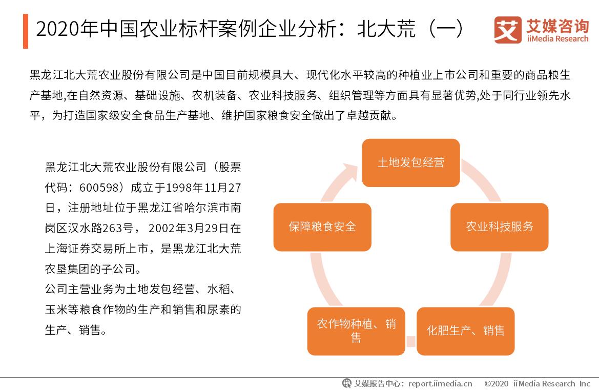 2020年中国农业标杆案例企业分析:北大荒(一)