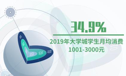 大学城商圈行业数据分析:2019年34.9%的大学城学生月均消费1001-3000元